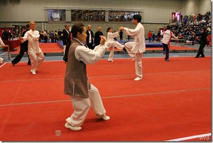 Open Flanders Wushu Cup 2013