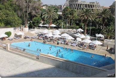 Damasrose, zwembad