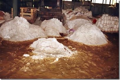 Bergen asbest