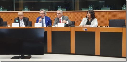 Mme FAL EU Parliament conference