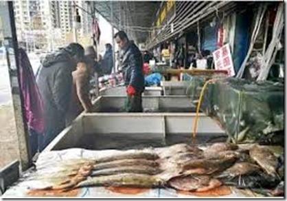 Huanan Groothandelsvismarkt